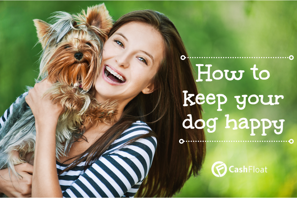 How to Keep your Dog Happy Cheaply