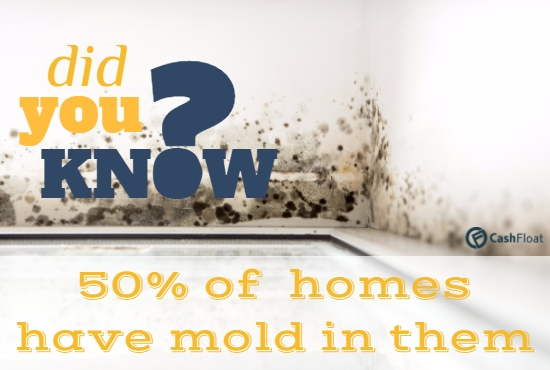 cashfloat helps you with mold